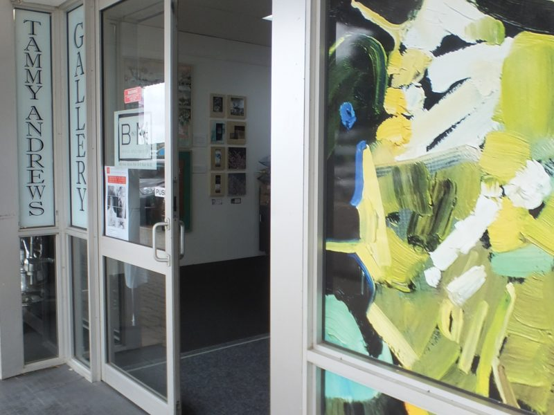 Tammy Andrews Gallery Esperance