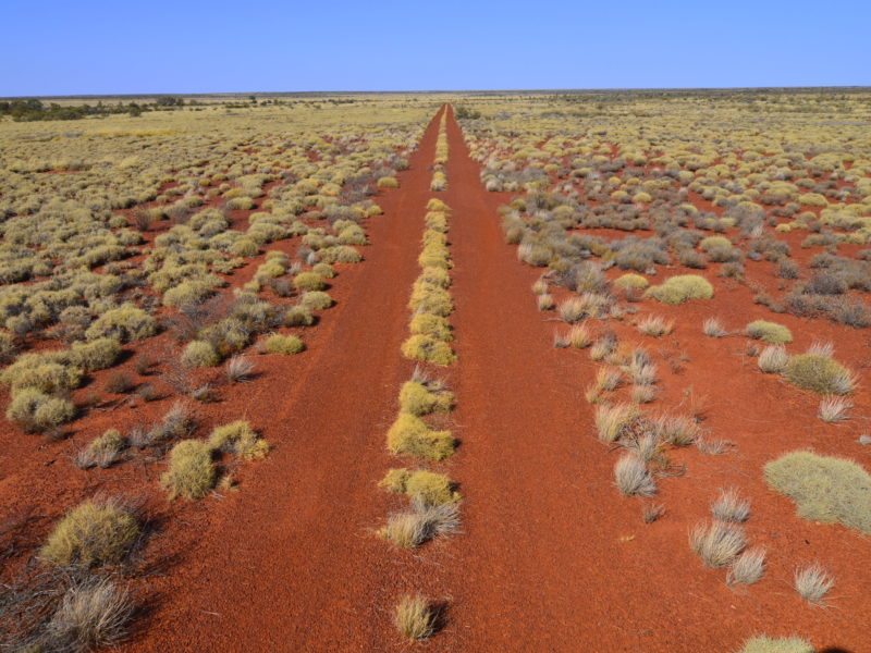 Canning Stock Route - Wiluna