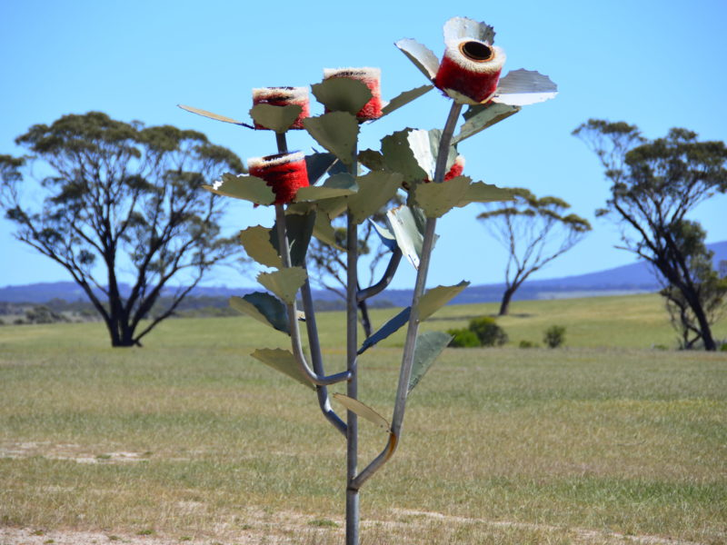 Farm Gate Art Trail Hopetoun - Ravensthorpe