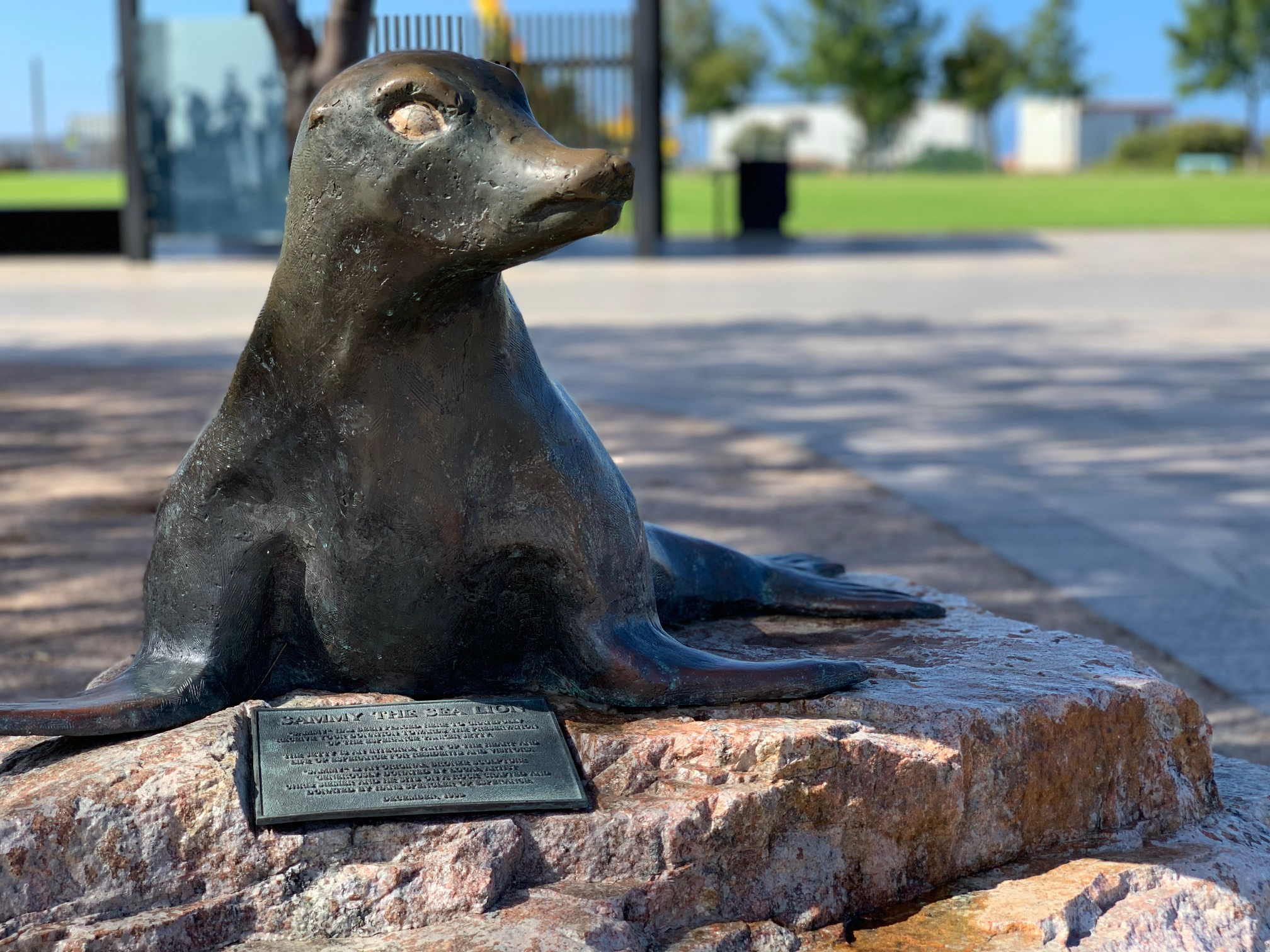 Sammy The Sea Lion Statue Our Gems Wa